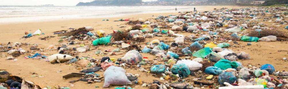 beach-filth.JPG